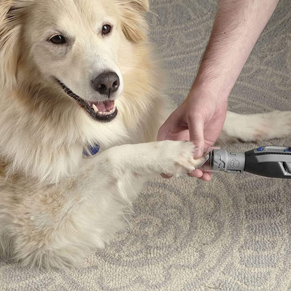 buy dog nail clippers online