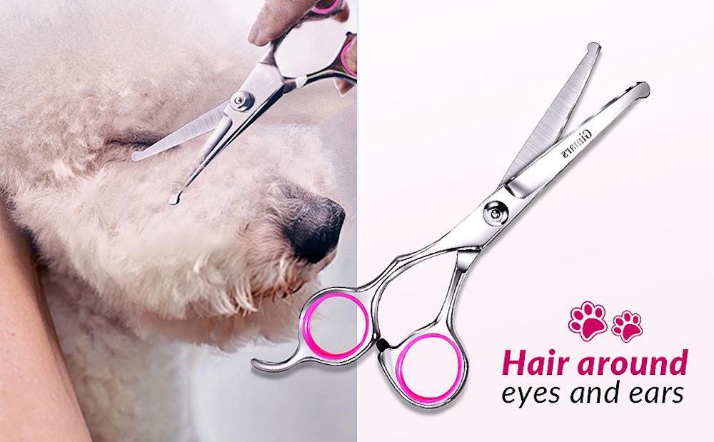 buy heavy duty dog groom scissors