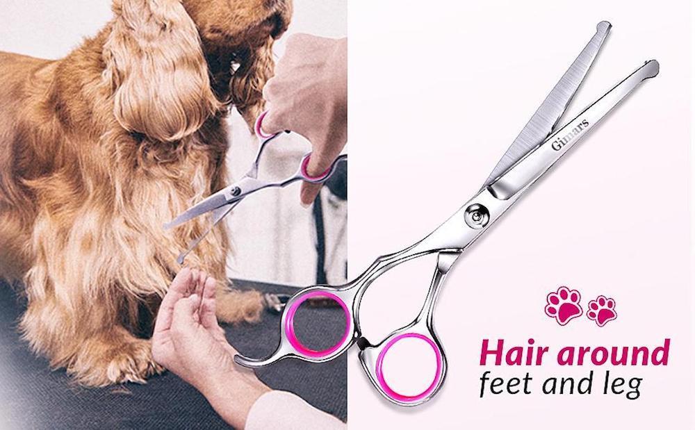 buy straight dog grooming shears online